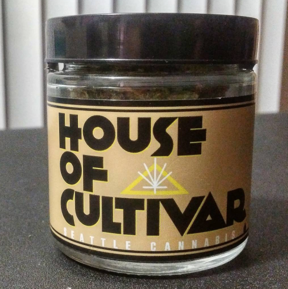 Orange Skunk by House of Cultivar | toasted n' posted