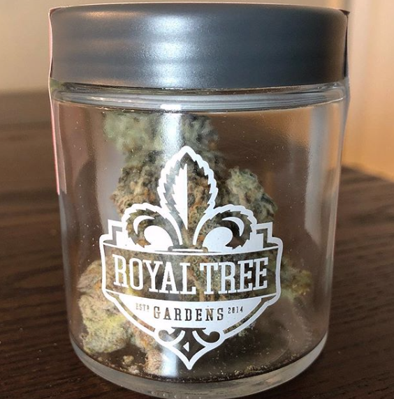 Gelato Cake by Royal Tree | toasted n' posted